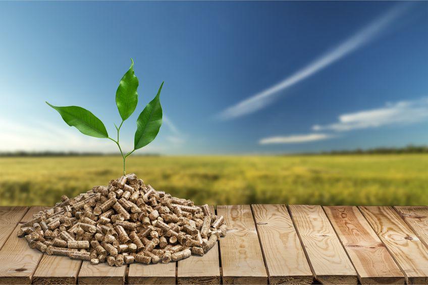 Pellet a ekologia